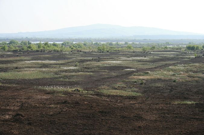 The Bog of Allen (Móin Alúine) with Croghan Hill ('Cruachan Bri Eile') in the background
