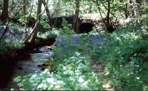 Fairy Paths' in the Gaelic world   The Atlantic Religion